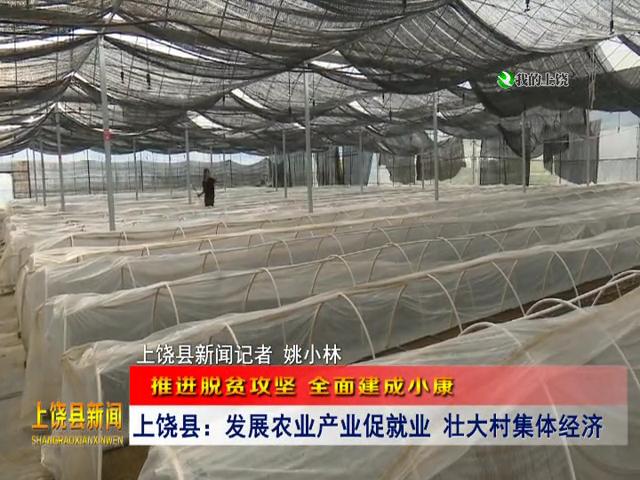上饶县:发展农业产业促就业 壮大村集体经济