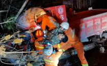 凌晨时分空载货车撞倒树木 驾驶员被困车内