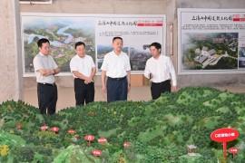 史文斌在三清山风景名胜区调研时强调 发挥资源禀赋优势 坚持在保护中发展 努力打造高品质的世界级旅游目的地