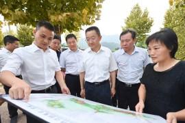 史文斌调研中心城区规划建设工作
