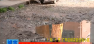 【创国卫县区台交叉监督】广丰区裕花园住宅小区卫生堪忧